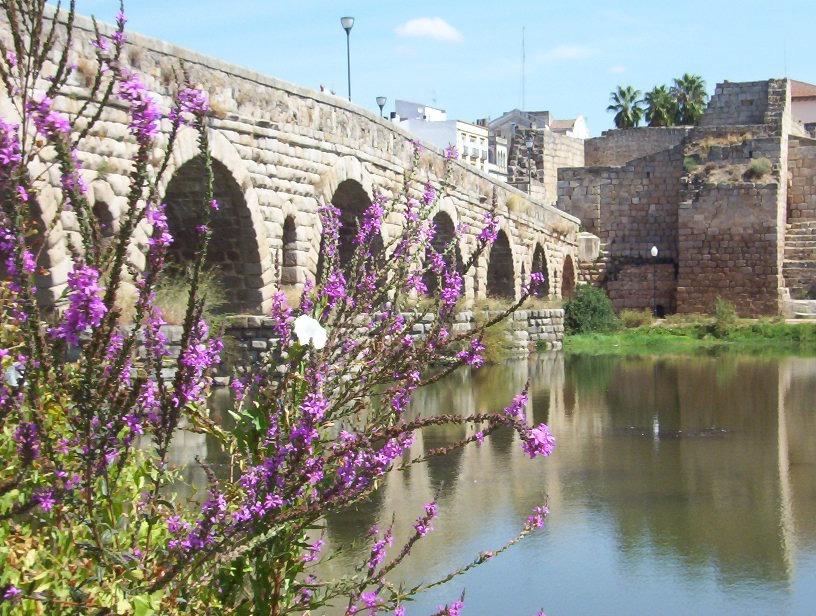 detalle puente romano sobre guadiana en merida