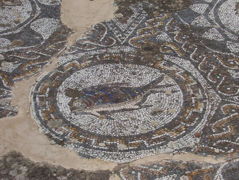 detalle mosaico en domus anfiteatro de merida